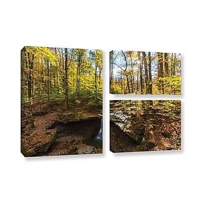 ArtWall 'Blue Hen Falls' 3-Piece Gallery-Wrapped Canvas Flag Set 24