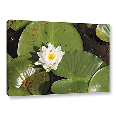 ArtWall 'Lily Pad' Gallery-Wrapped Canvas 12