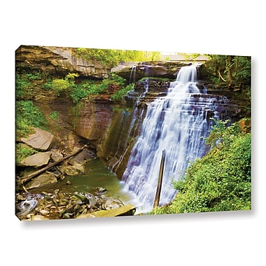 ArtWall 'Brandywine Falls 2' Gallery-Wrapped Canvas 16