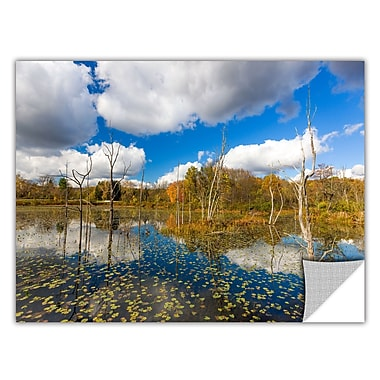 ArtWall 'Beaver Marsh' Art Appeelz Removable Wall Art Graphic 12