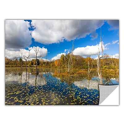 ArtWall 'Beaver Marsh' Art Appeelz Removable Wall Art Graphic 24