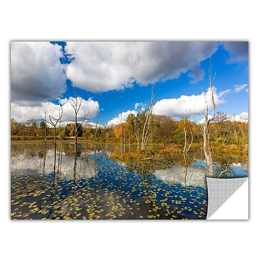 "ArtWall 'Beaver Marsh' Art Appeelz Removable Wall Art Graphic 24"" x 36"" (0yor001a2436p)"