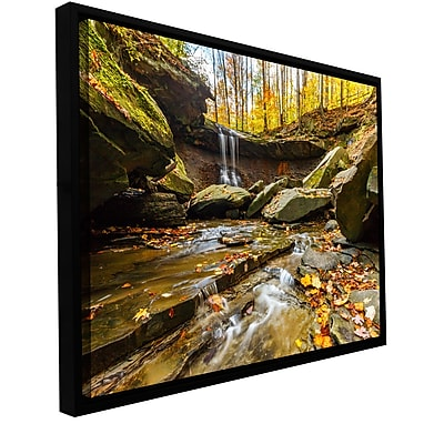 ArtWall 'Blue Hen Falls 3' Gallery-Wrapped Canvas 24