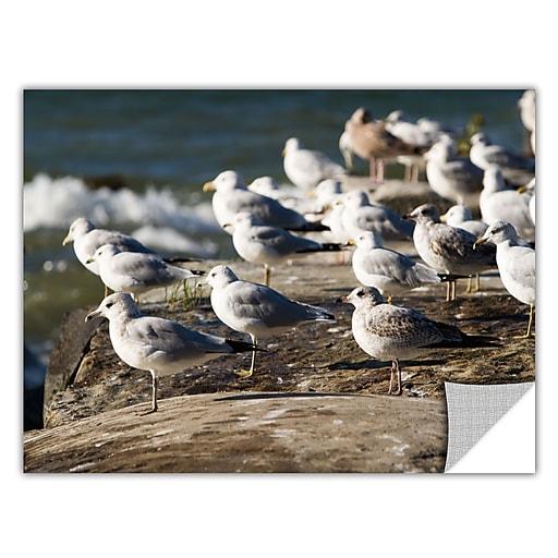 "ArtWall ""Pigeons"" Art Appeelz Removable Graphic Wall Art 16"" x 24"" (0yor049a1624p)"