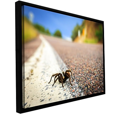 ArtWall 'Tarantula' Gallery-Wrapped Canvas 24