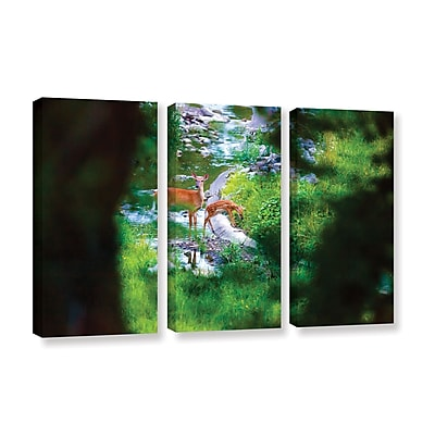 ArtWall 'Deer' 3-Piece Gallery-Wrapped Canvas Set 36