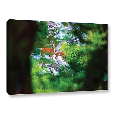 "ArtWall 'Deer' Gallery-Wrapped Canvas 16"" x 24"" (0yor039a1624w)"