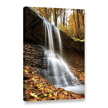 ArtWall 'Blue Hen Falls 2' Gallery-Wrapped Canvas 32