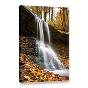 "ArtWall 'Blue Hen Falls 2' Gallery-Wrapped Canvas 32"" x 48"" (0yor002a3248w)"