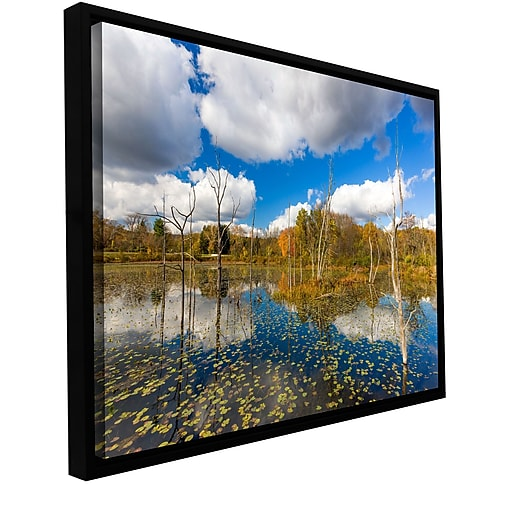 "ArtWall 'Beaver Marsh' Gallery-Wrapped Canvas 24"" x 36"" Floater-Framed (0yor001a2436f)"