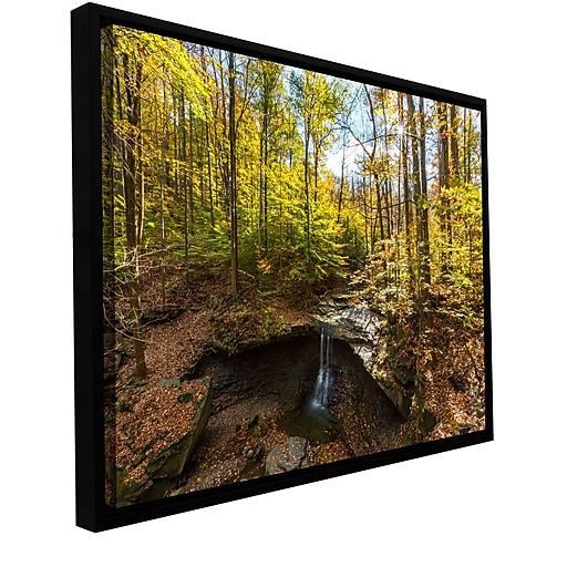 "ArtWall 'Blue Hen Falls' Gallery-Wrapped Canvas 16"" x 24"" Floater-Framed (0yor004a1624f)"