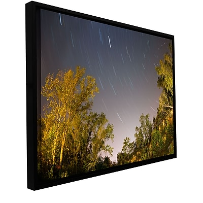 ArtWall 'Star Trails' Gallery-Wrapped Canvas 12
