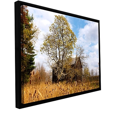 ArtWall 'Cvnp Barn' Gallery-Wrapped Canvas 24