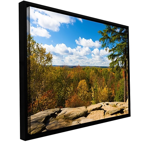 "ArtWall 'Virginia Kendall' Gallery-Wrapped Canvas 16"" x 24"" Floater-Framed (0yor060a1624f)"