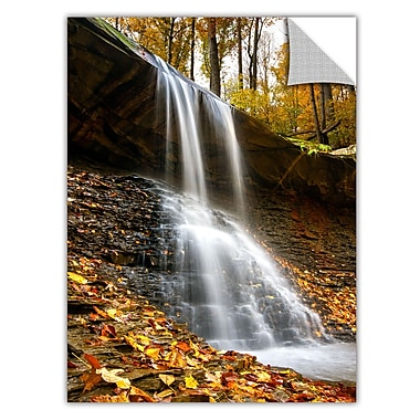 ArtWall 'Blue Hen Falls 2' Art Appeelz Removable Wall Art Graphic 16