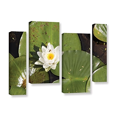 ArtWall 'Lily Pad' 4-Piece Gallery-Wrapped Canvas Staggered Set 36