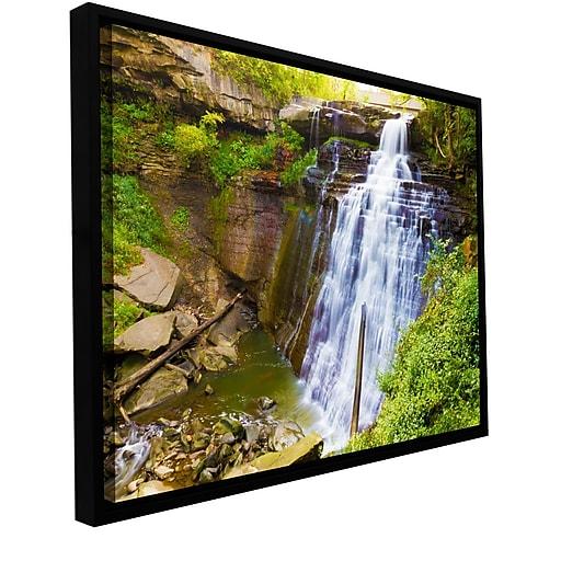 "ArtWall 'Brandywine Falls 2' Gallery-Wrapped Canvas 24"" x 36"" Floater-Framed (0yor008a2436f)"