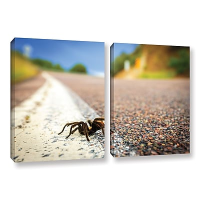 ArtWall 'Tarantula' 2-Piece Gallery-Wrapped Canvas Set 32