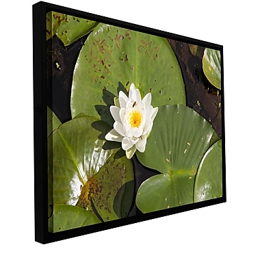 ArtWall 'Lily Pad' Gallery-Wrapped Floater-Framed Canvas 16
