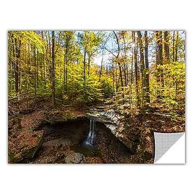ArtWall 'Blue Hen Falls' Art Appeelz Removable Wall Art 16