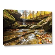 "ArtWall 'Blue Hen Falls 3' Gallery-Wrapped Canvas 32"" x 48"" (0yor003a3248w)"