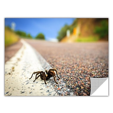 ArtWall 'Tarantula' Art Appeelz Removable Wall Art Graphic 24