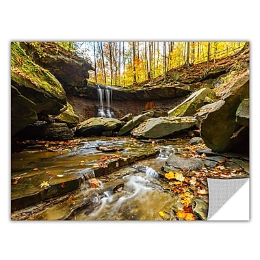 ArtWall 'Blue Hen Falls 3' Art Appeelz Removable Wall Art Graphic 16
