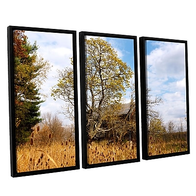 "ArtWall 'Cvnp Barn' 3-Piece Canvas Set 36"" x 54"" Floater-Framed (0yor038c3654f)"