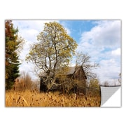 "ArtWall 'Cvnp Barn' Art Appeelz Removable Wall Art Graphic 16"" x 24"" (0yor038a1624p)"