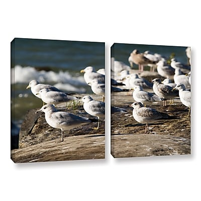 "ArtWall 'Pigeons' 2-Piece Gallery-Wrapped Canvas Set 18"" x 28"" (0yor049b1828w)"