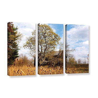 ArtWall 'Cvnp Barn' 3-Piece Gallery-Wrapped Canvas Set 36