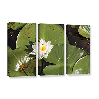 ArtWall 'Lily Pad' 3-Piece Gallery-Wrapped Canvas Set 36