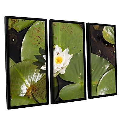 """ArtWall 'Lily Pad' 3-Piece Canvas Set 36"""" x 54"""" Floater-Framed (0yor045c3654f)"""