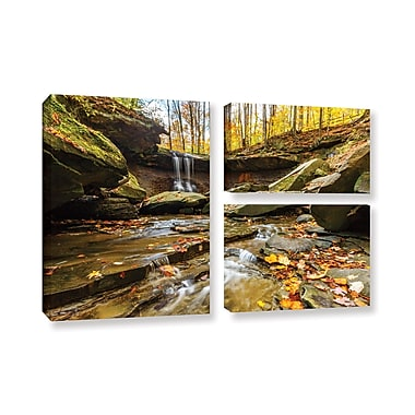 ArtWall 'Blue Hen Falls 3' 3-Piece Gallery-Wrapped Canvas Flag Set 24