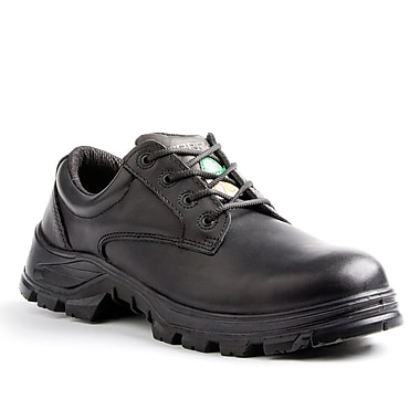 Terra Albany Men's Casual Safety Shoe, Black, Size 10.5