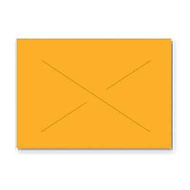 Garvey® 16 mm x 22 mm Blank Label, Fluorescent Orange, 9000 Labels/Sleeve (GX2216)