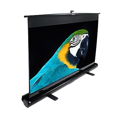 Elite Screens F80NWH ezCinema HDTV Projector Screen