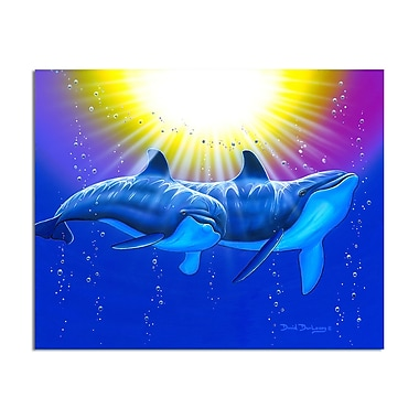 Ready2hangart 'New Dolphins' by David Dunleavy Graphic Art on Canvas