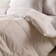 Nest Home Lightweight Down Alternative Comforter; Full/Queen