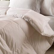 Nest Home All Season Down Alternative Comforter; Twin