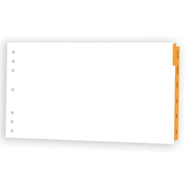 Appointment Book Planner Dividers; 20x11