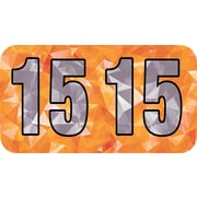 Medical Arts Press® Holographic End-Tab Year Labels, 2015, Orange
