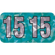 Medical Arts Press® Holographic End-Tab Year Labels, 2015, Aqua
