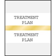 Medical Arts Press® Standard Preprinted Chart Divider Tabs; Treatment Plan, Gold