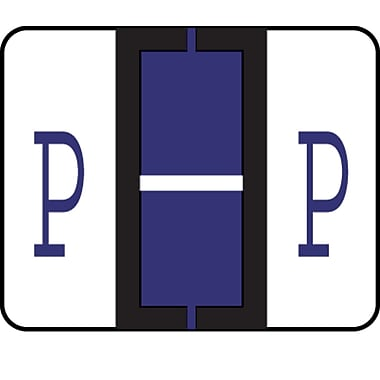 Medical Arts Press® TAB® Products Compatible Alpha Sheet Style Labels; Letter P