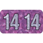 Medical Arts Press® Holographic End-Tab Year Labels, 2014, Violet