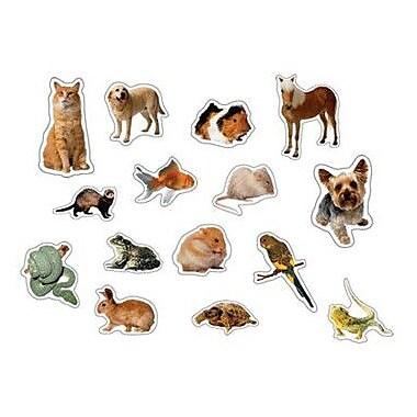 Carson Dellosa Publications Pets Photographic Sticker