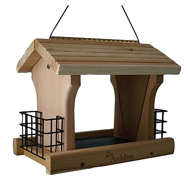 Audubon/Woodlink Large Ranch Suet Hopper Bird Feeder