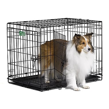 Midwest Homes For Pets iCrate Double Door Pet Crate; Medium (21'' H x 19'' W x 30''L)