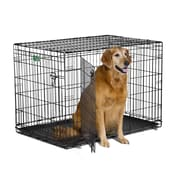 Midwest Homes For Pets iCrate Double Door Pet Crate; Large (30'' H x 28'' W x 42'' L)